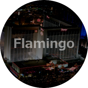 interior-fashion-portfolio-flamingo